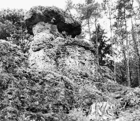 Hutstein altmuehltal bronn